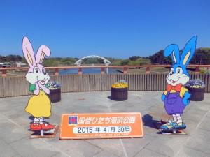 01_4_HitachiSeasidePark01_gate0